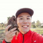里芋種植えのやり方(親芋を使用)