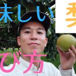 美味しい梨の選び方、おすすめ
